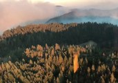 Ranch Fire Becomes Largest Wildfire in California History