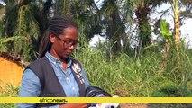 RDC: 4 nouveaux cas d'Ebola à l'est
