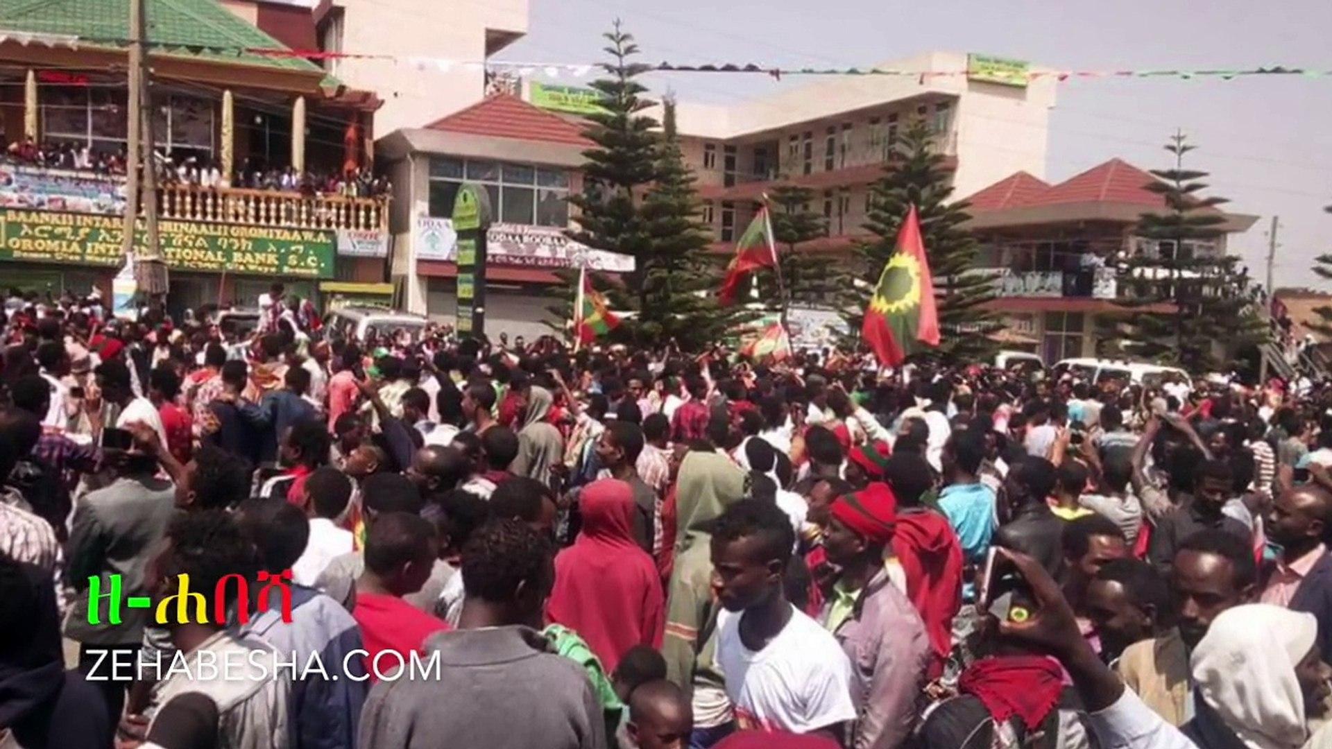 Ethiopia: ዘ-ሐበሻ ዜና