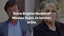 Le clash entre Brigitte Bardot et Nicolas Hulot