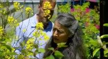 Ben Fogle New Lives In The Wild S03 Ep02 Alaska Hd Watch