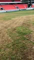 L'état de la pelouse du stade du Moustoir