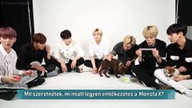 Monsta X Plays With Puppies While Answering Fan Questions (HunSub)