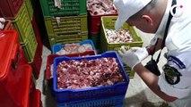 Algérie : un atelier illégale de préparation et de distribution de shawarma a été suspendue