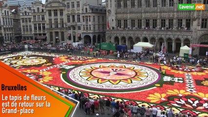 Le tapis de fleurs est de retour sur la Grand-place de Bruxelles