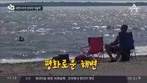 해변의 로봇 상어에 '화들짝'