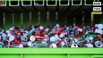 We followed the recycling process from the bins to the plant to understand where our recycling actually goes