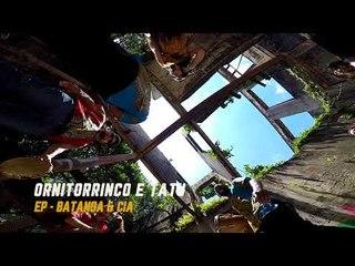 Batanga & Cia. - Ornitorrinco e tatu (teaser)