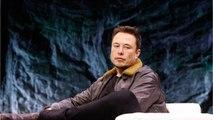 Urban Dictionary Is Trolling Tesla CEO Elon Musk