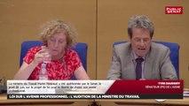 Avenir professionnel : Audition de Muriel Pénicaud + Séance Avenir professionnel - Les matins du Sénat (08/08/2018)