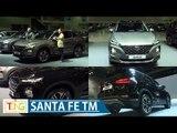 현대차 신형 '싼타페TM' 실물, 국내 첫 공개 (Hyundai SANTA FE TM, SUV)
