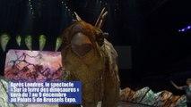 « Sur la terre des dinosaures » du 7 au 9 décembre au Palais 5 de Brussels Expo.
