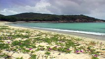 Those Relaxing Sounds of Waves Tropical Beaches & Wave Sounds VIRGIN ISLANDS BEACHES 1 HOU