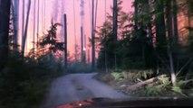 Pris au piège en voiture dans un feu de forêt