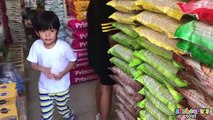 Toddler visits a PET SHOP Part 2 Dogs, Cats, Birds Animals and kids pets toys children Sky