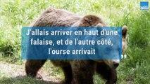 Lucas, poursuivi par une ourse dans les Pyrénées