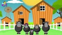 Baa Baa Black Sheep Finger Family Nursery Rhyme ,  Finger Family Songs ,  Baa Baa Black shee