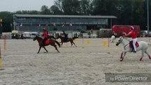La Province - Sports équestres - Extrait des championnats du monde par équipes des Pony Games à Ghlin (2)