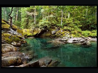 river virtual screensaver, water reflection meditation