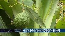 Kenya exports toxic waste to UK - video dailymotion