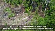 Brésil : une tribu isolée repérée en Amazonie