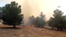Göbeklitepe Arkeolojik Alanı Yakınlarındaki Ormanlık Alanda YangınGöbeklitepe Arkeolojik Alanı...