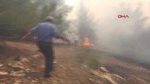 Şanlıurfa'da Göbeklitepe Çevresindeki Ormanlık Alanda Yangın