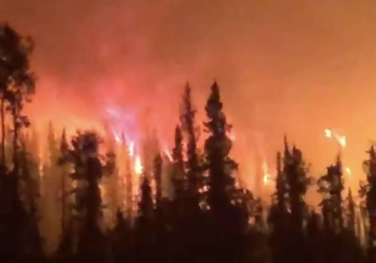 Forest Worker Drives Through Lake Shovel Fire in British Columbia