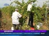 Dnevnik, 25.avgust 2018. (RTV Bor)
