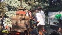 Ban des vendanges : la pressée du raisin