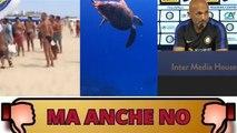 Dal blitz di 'Noi con Salvini' al cronista Rai offeso... Ma anche no!
