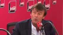 """Nicolas Hulot : """"Je ne regrette pas d'avoir accepté mais je n'avais peut-être pas les épaules pour être ministre"""""""
