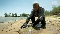 TV River Monsters S04E00 Special Killer Weapons