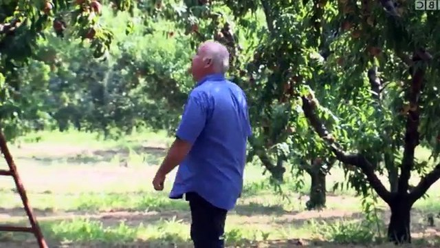 Rick Stein's Long Weekends S01 - Ep09 Thessaloniki -. Part 02 HD Watch