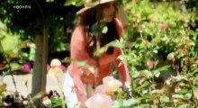 The Real Housewives of Beverly Hills S04 - Ep09 Guess Who's Coming to Dinner HD Watch