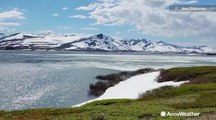 AccuWeather in Alaska: How small animals may affect climate change