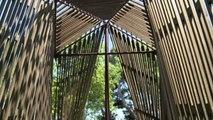 Biennale architettura, il bosco e il sacro: il progetto Vaticano