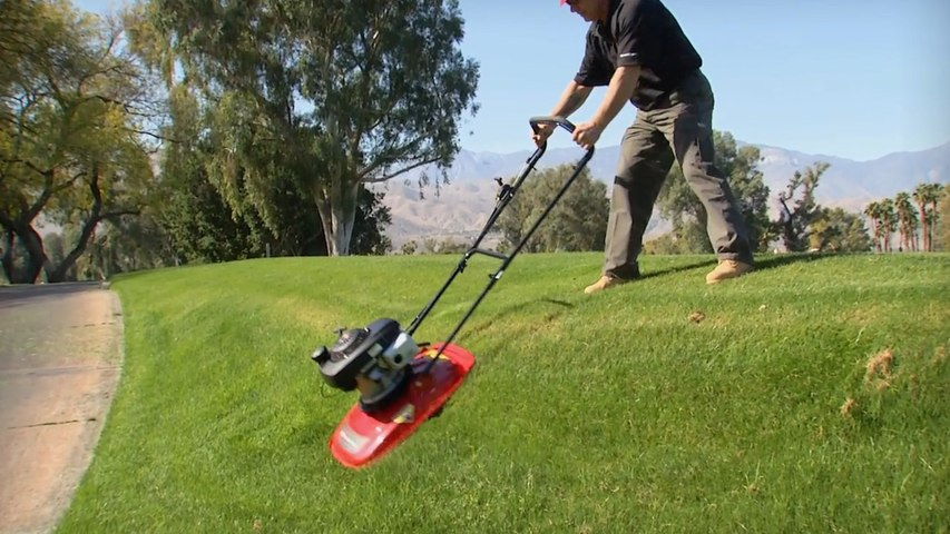 Coolest Way To Mow Your Lawn