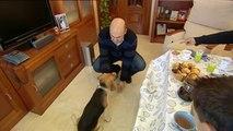 Malas Pulgas - Perros dominantes - Prog. 2