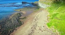 Britain at Low Tide S02 - Ep05 East Yorkshire HD Watch