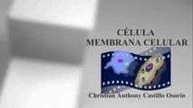 CÉLULA - MENBRANA CELULA  - DOCUMENTAL COMPLETO