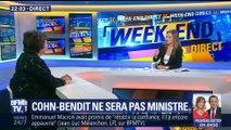 Ministre de l'écologie: Cohn-Bendit ne remplacera pas Hulot