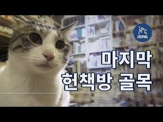 우리나라 단 하나 남은 부산 헌책방 골목ㅣ숏다큐멘터리 다큐멘터리ㅣ부산 여행 Busan Travel