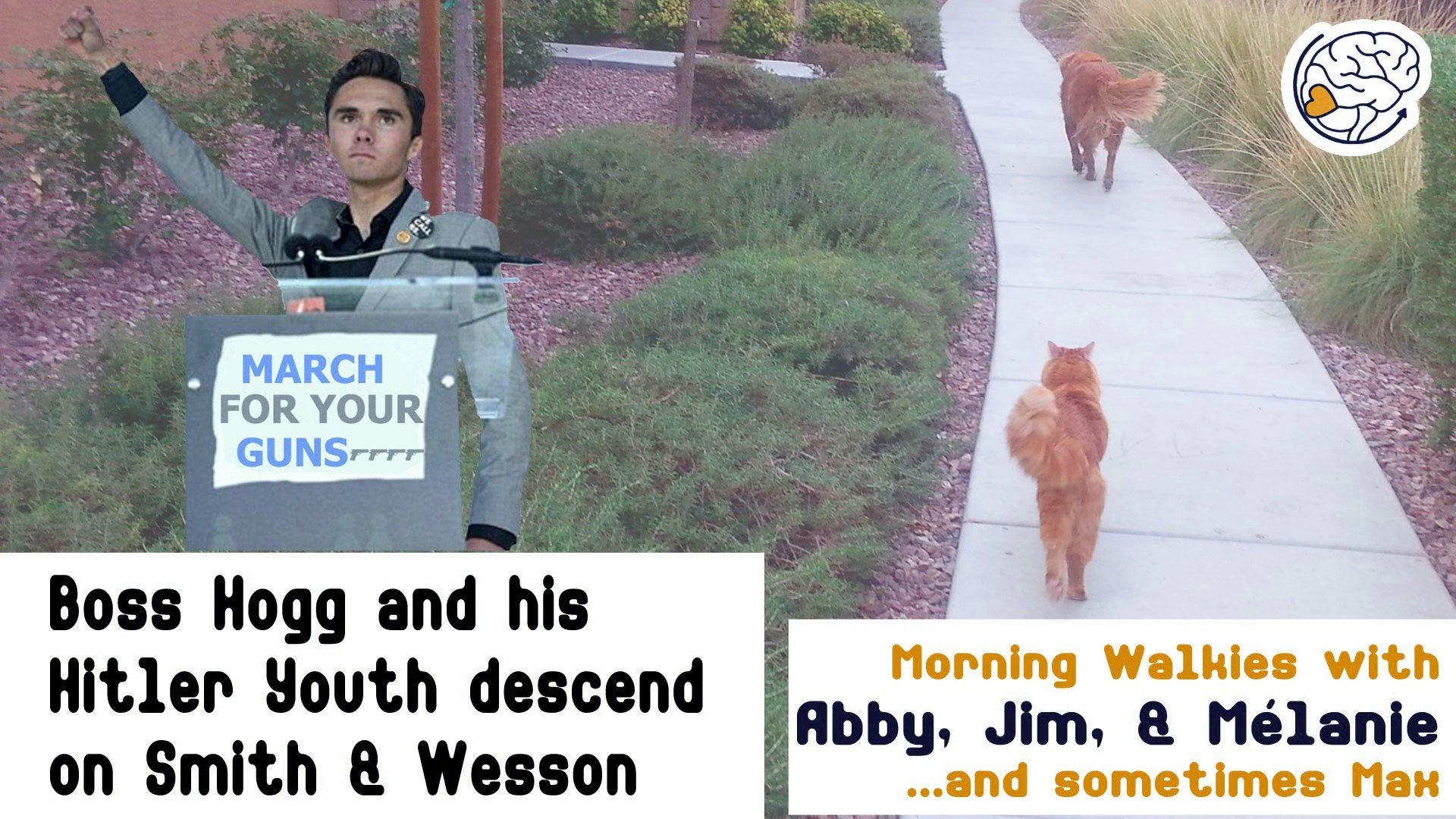 Boss Hogg and his Hitler Youth descend on Smith & Wesson -Walkies with Abby