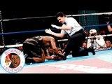 Felix Trinidad vs Larry Barnes (Highlights)