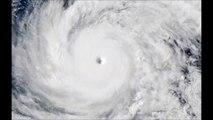 Un très puissant typhon, considéré comme le plus violent qui ait frappé directement le Japon depuis 25 ans, touche le pays