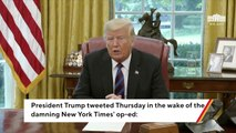 Trump Slams The 'Deep State' After Anonymous NYT Op-Ed