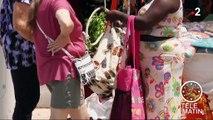 Saint-Martin : le tourisme repart doucement, un an après Irma