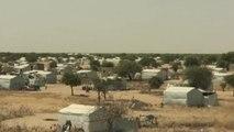 Afrique, LAC TCHAD : LA MENACE BOKO HARAM PERSISTE