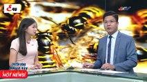 Tin Tức 24h 06/09/2018   TIN MỚI NHẤT TRONG NGÀY HÔM NAY - Thời sự vtv1 - Thời sự Việt Nam E4U
